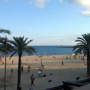 Sunning at the beach