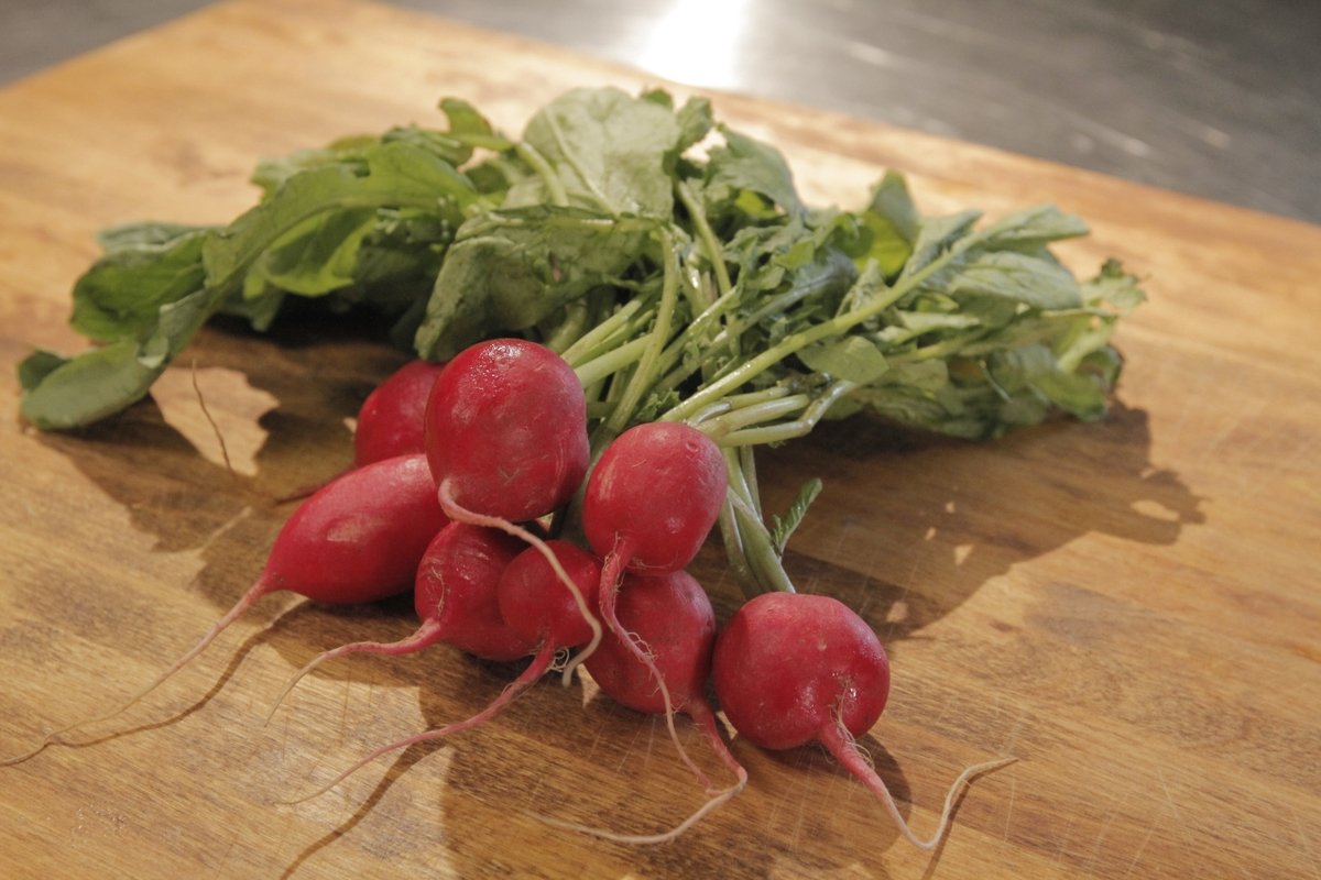 Radishes close up