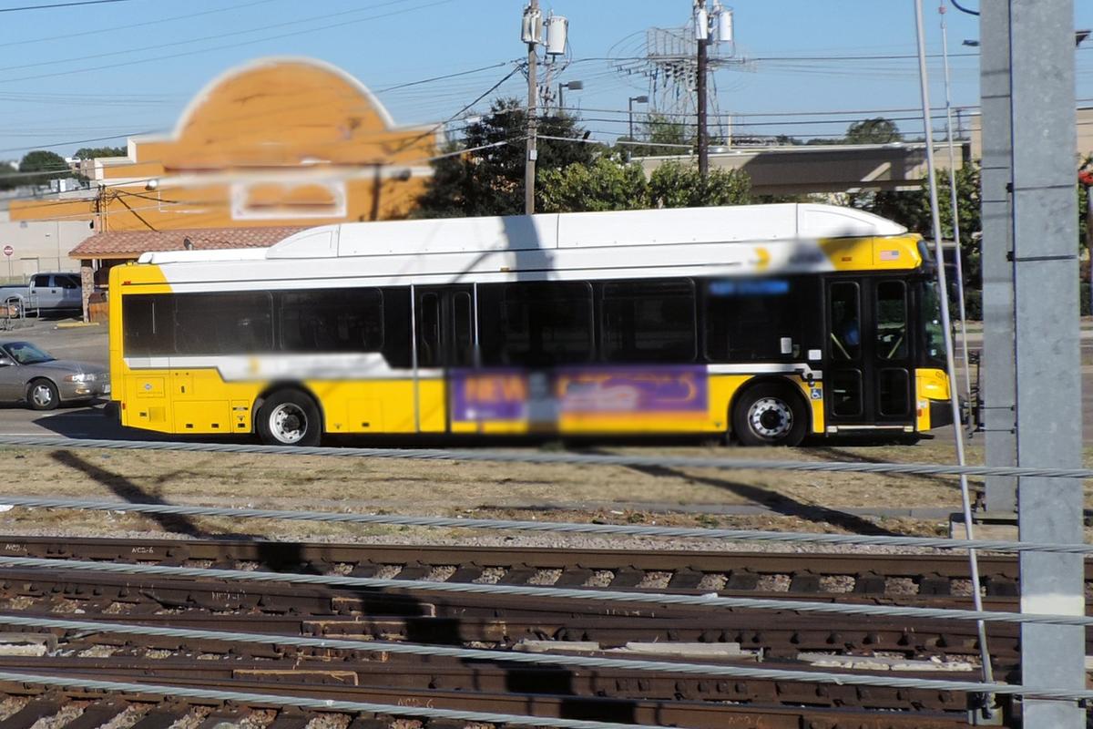 City bus transportation