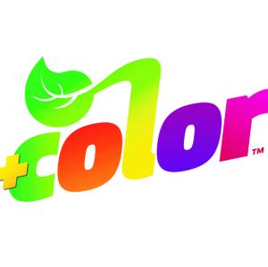 AHA +color logo