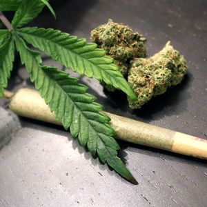 Marijuana use associated with complications after heart attack or procedures