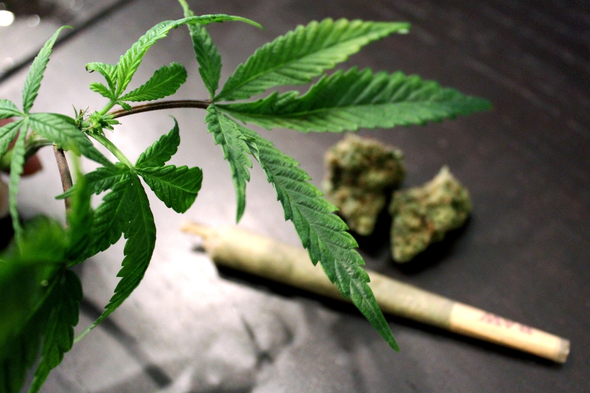 Marijuana-various