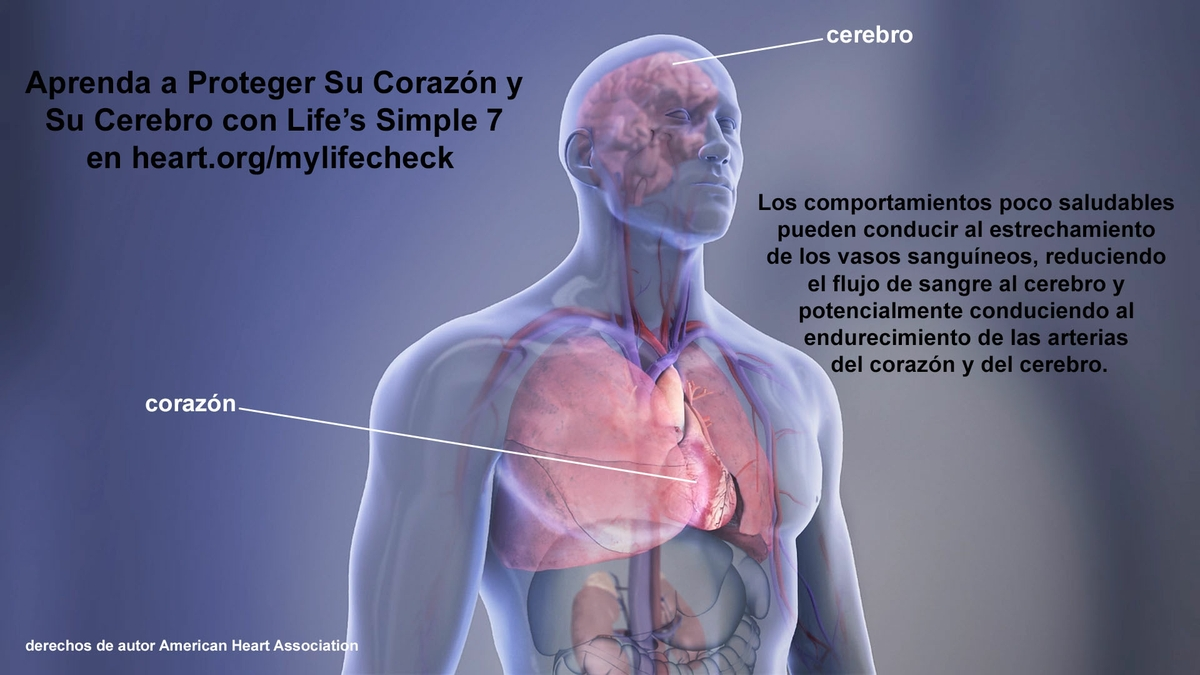 Life's simple 7 graphic - Spanish