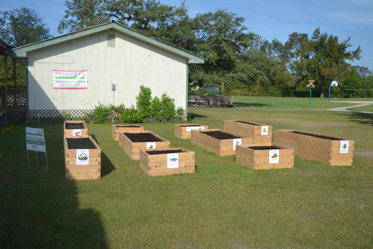 American Heart Association Teaching Garden wide shot