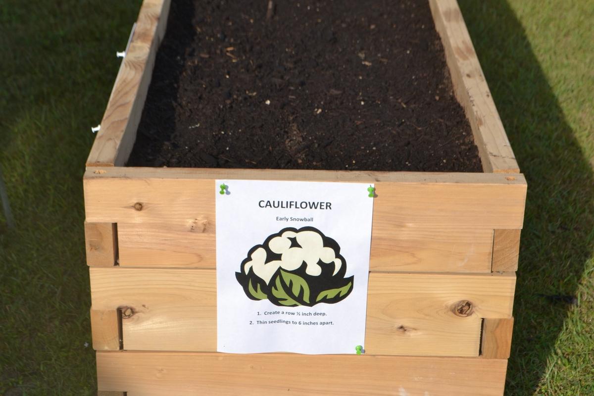 American Heart Association Teaching Garden