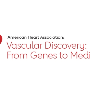 Vascular Discovery 2019 logo