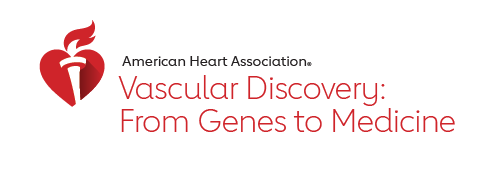 Vascular Discovery 2019 logo