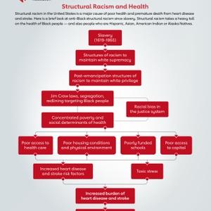 Structural Racism Flowchart