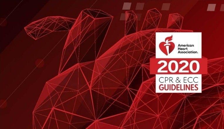 2020 CPR ECC Guidelines graphic