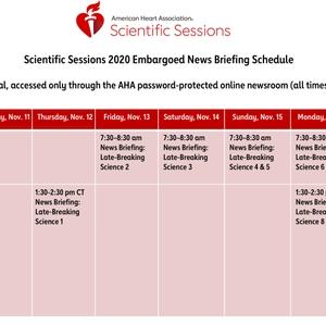 SS20 News Briefing Schedule