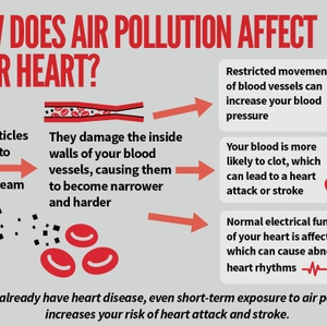 How does air pollution affect your heart?