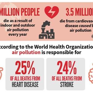 Air pollution CVD and stroke statistics