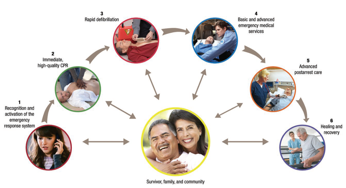 Centralized System of Care