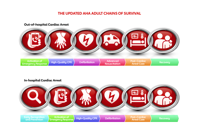 Adult cardiac arrest chains of survival graphic