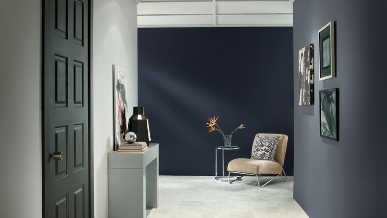Navy Blazer Midnight Blue - Hall Entry Wall