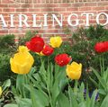Arlington County Board Accepts Updated Fairlington-Shirlington Neighborhood Conservation Plan