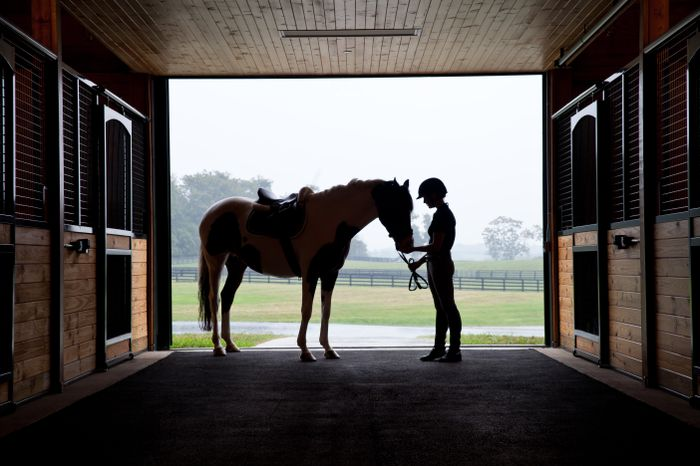 Stable Silhouette