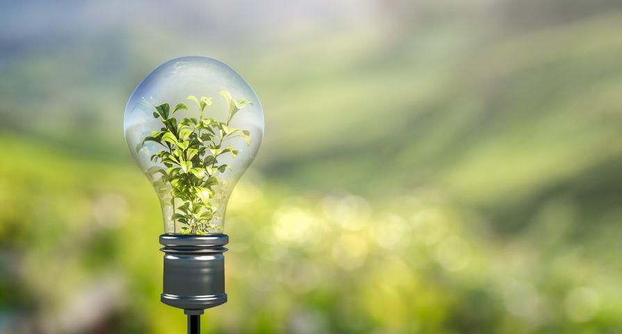 Xerox souligne COVID-19, les efforts de diversité et de changement climatique dans le rapport de responsabilité sociale d'entreprise 2020