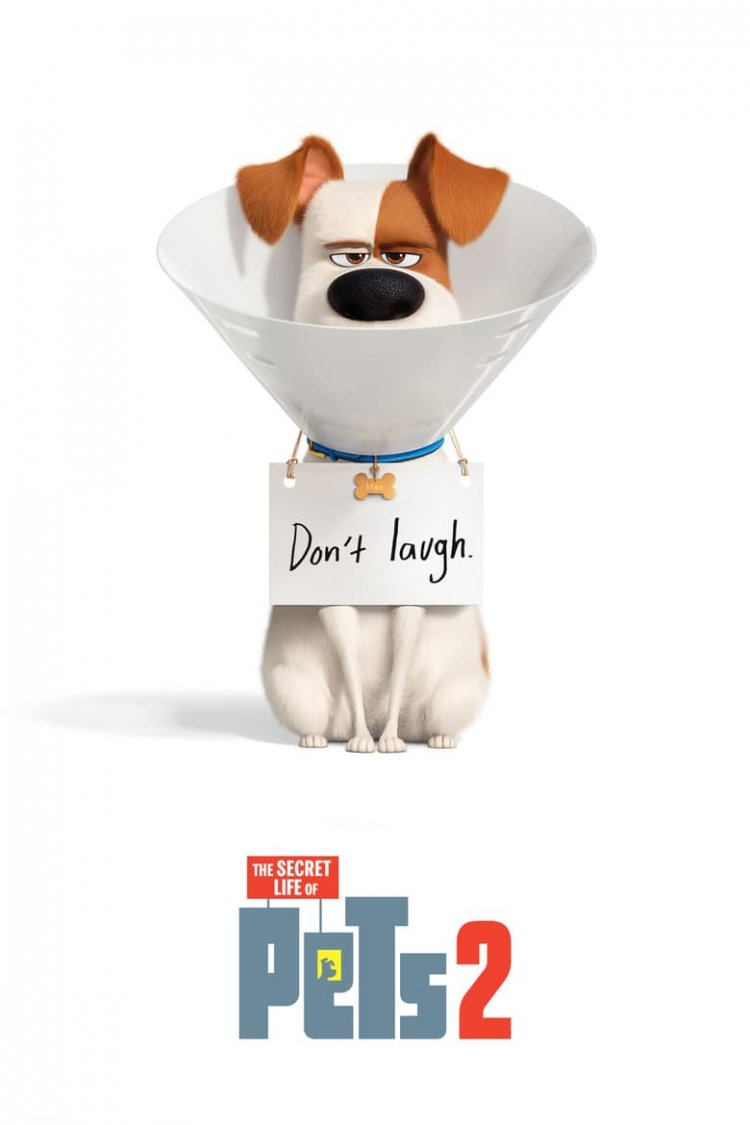 """The Secret Life of Pets 2"" movie poster"