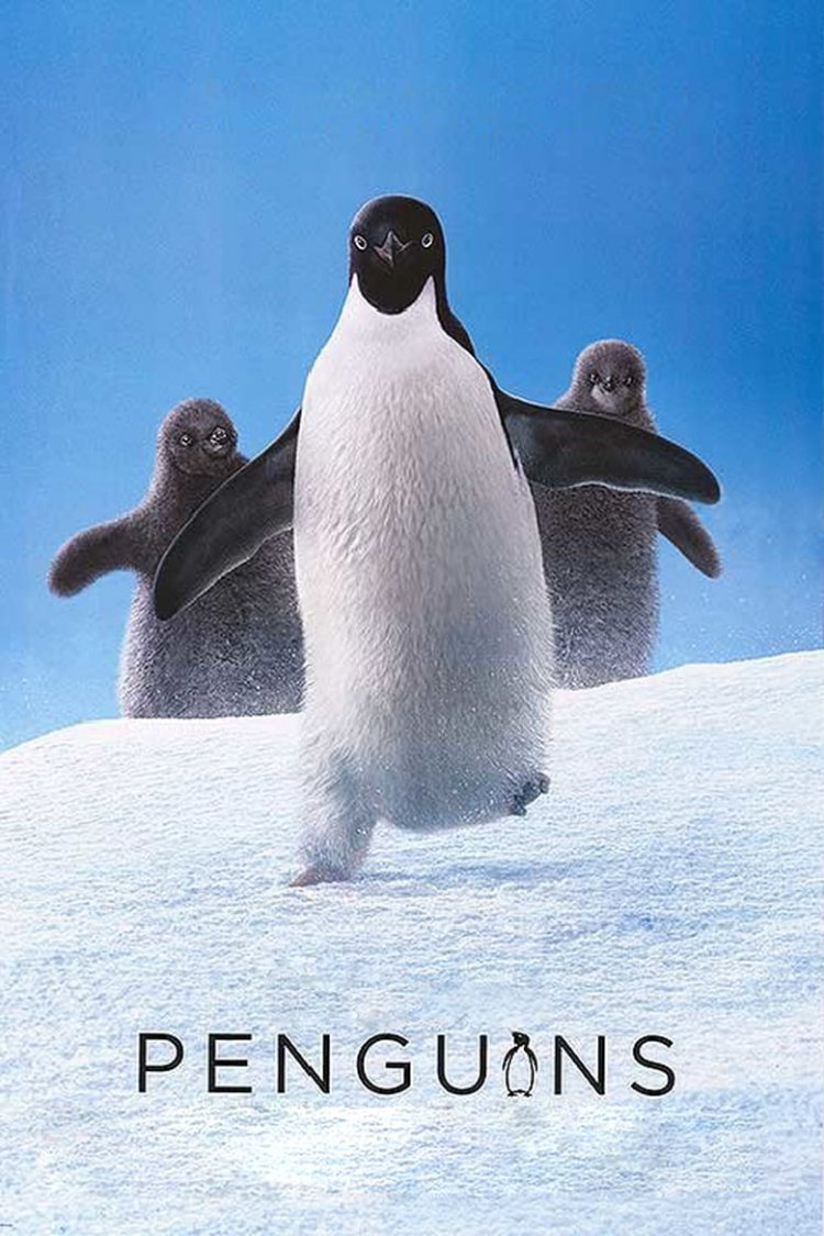 """Penguins"" movie poster"