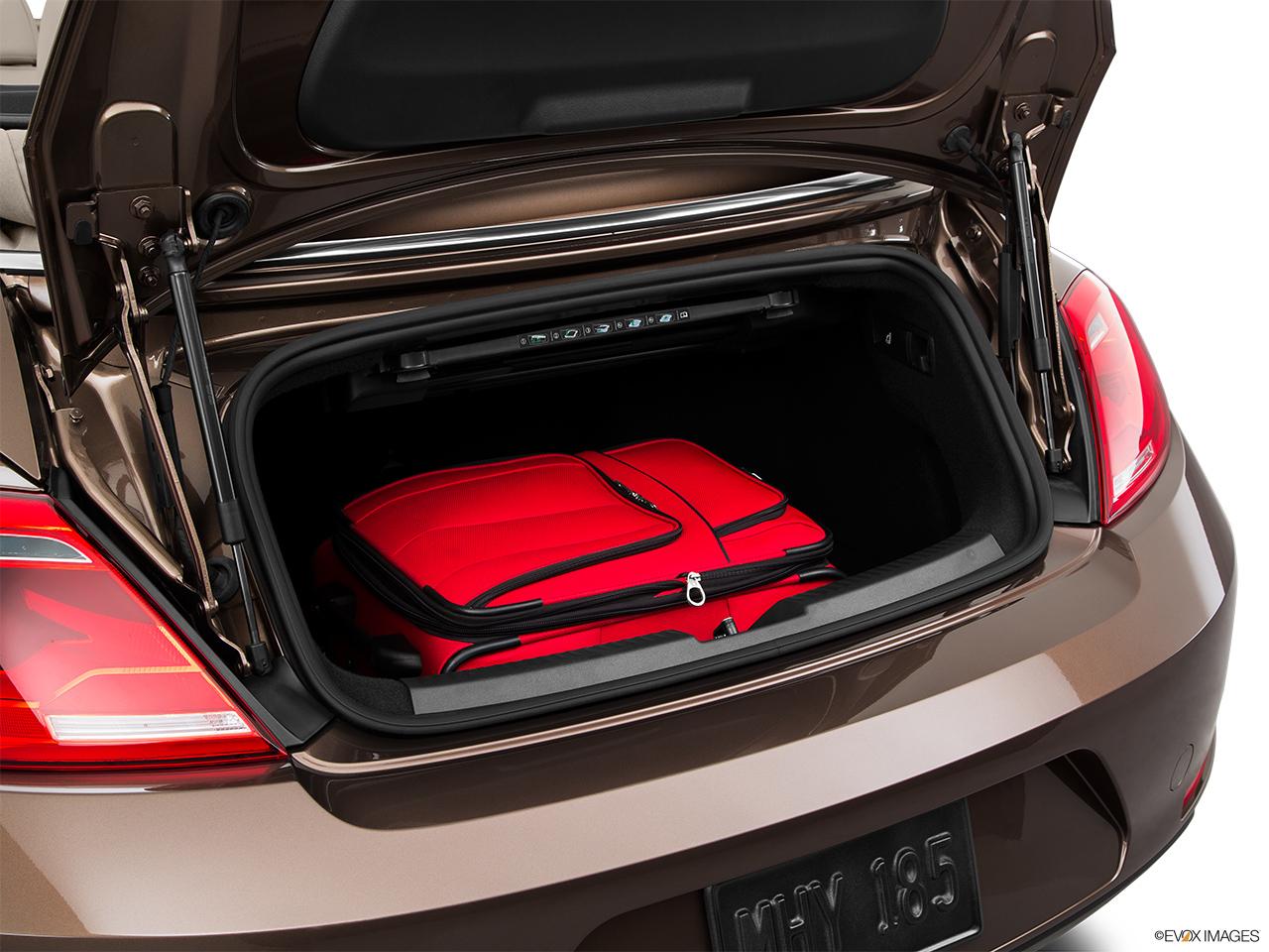 2015 Volkswagen Beetle Convertible 2 Door Auto 1.8T w/Tech - Trunk props & 10240_st1280_122.jpg