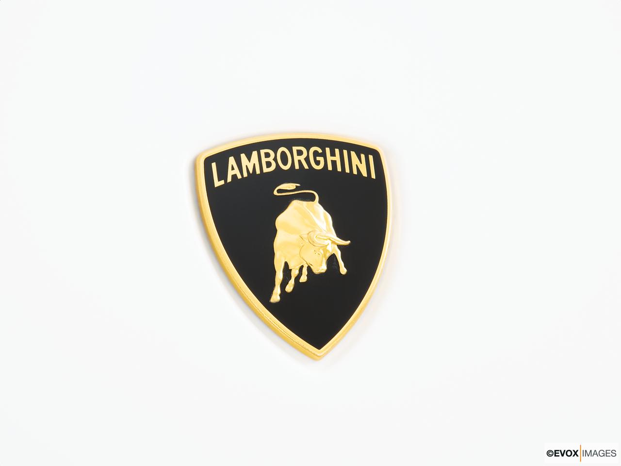 2013 Lamborghini Gallardo Convertible Lp570 4 Performante