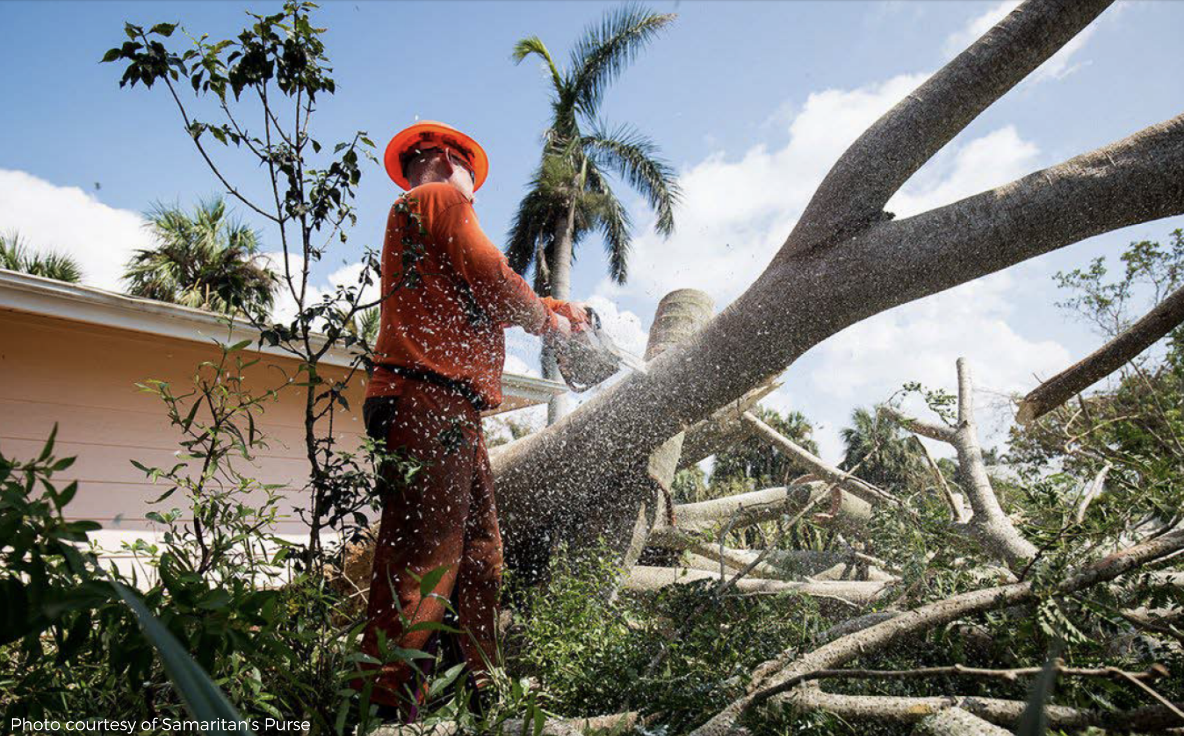 Hurricane Irma: One Year Later Header Image
