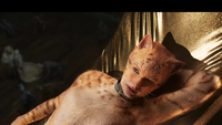 'Cats' box office disaster tanks Universal's profit