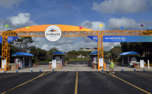 Image for SeaWorld is temporarily furloughing over 90% of its employees
