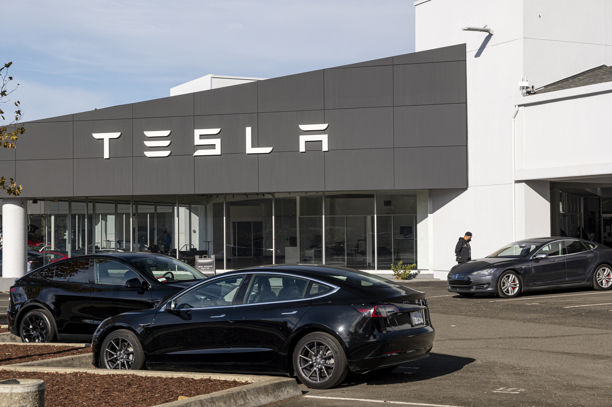 Tesla shakes off supply chain issues to post record profit, again