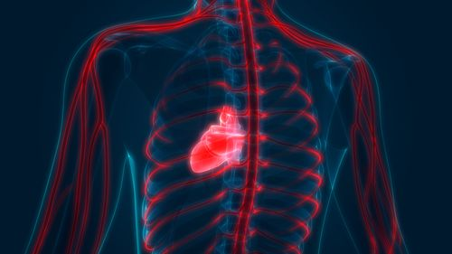 Image for Covid-19 study suggests to screen recovering athletes for heart inflammation before they return to play
