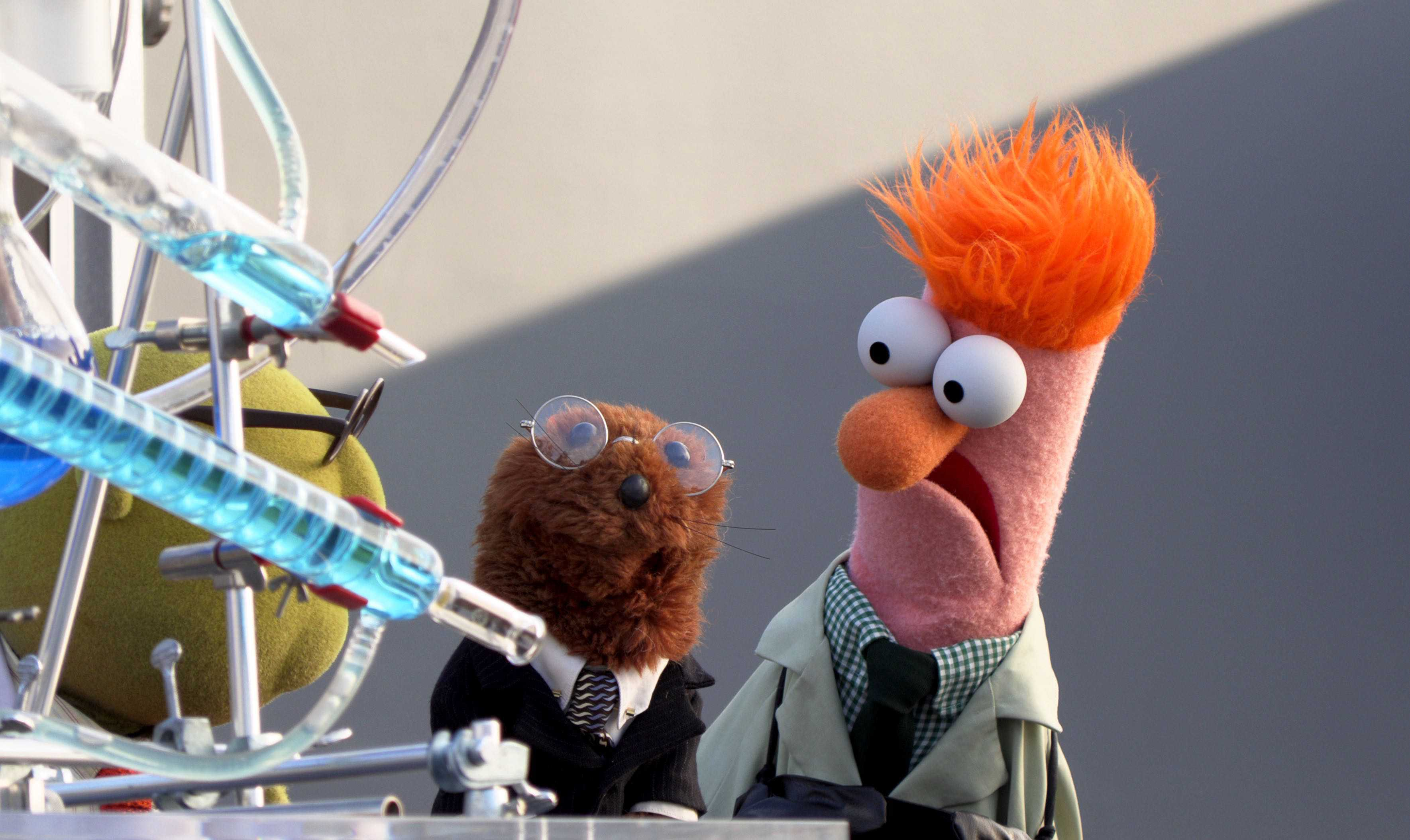 'Muppets Now' brings the old gang to a new setting on Disney+