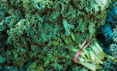 Image for Kale joins the ranks of the annual 'Dirty Dozen' pesticide list