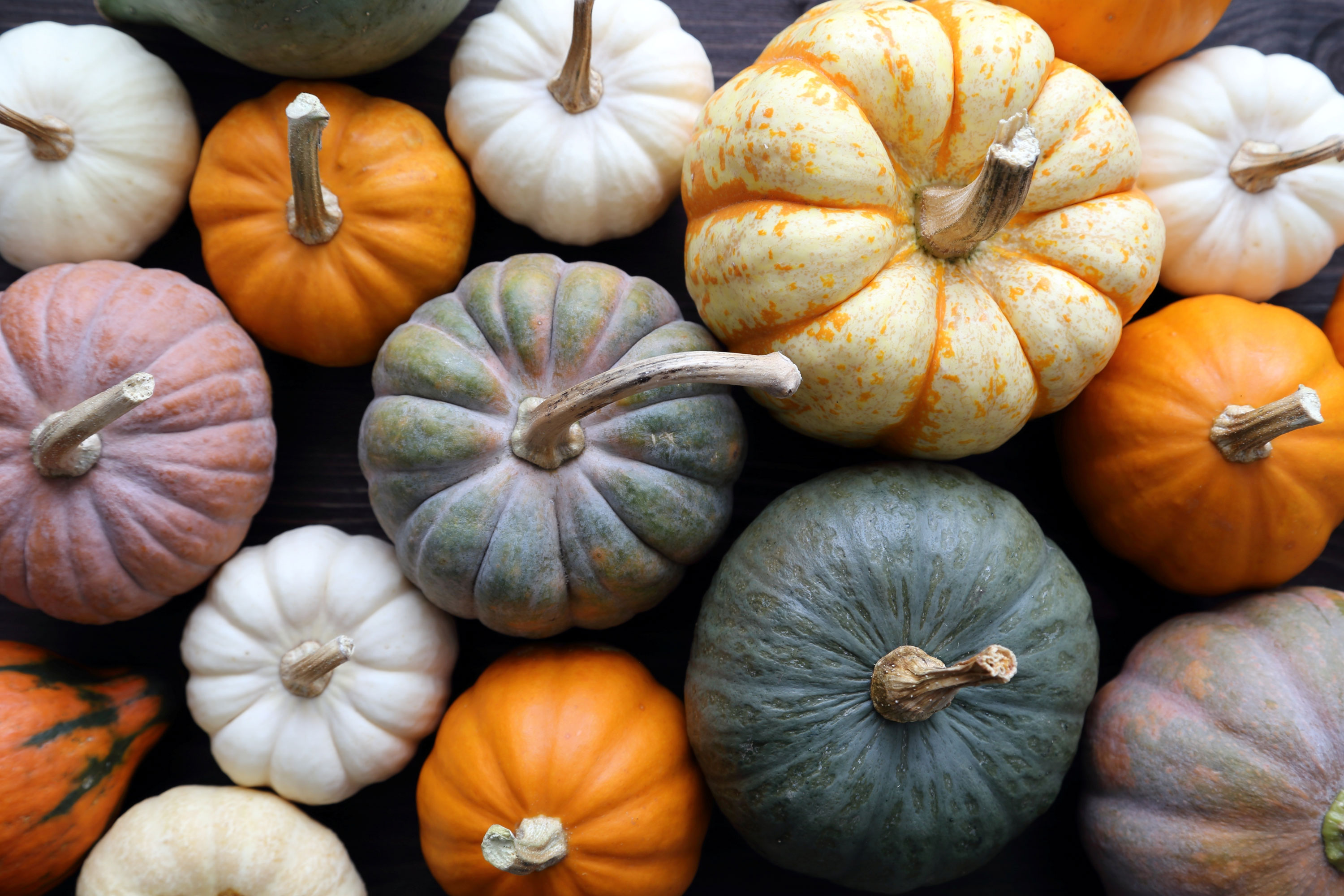 Forget that pumpkin spice flavored latte. That is not pumpkin. These foods are