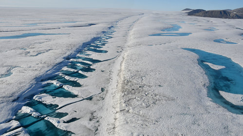 Image for Canadian ice shelf larger than Manhattan collapses into the sea