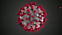 What you need to know about coronavirus on Wednesday, April 8