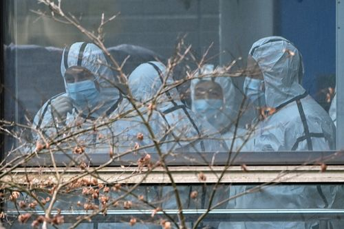 Image for WHO coronavirus investigators pinpoint overlooked Chinese data for further study, source says
