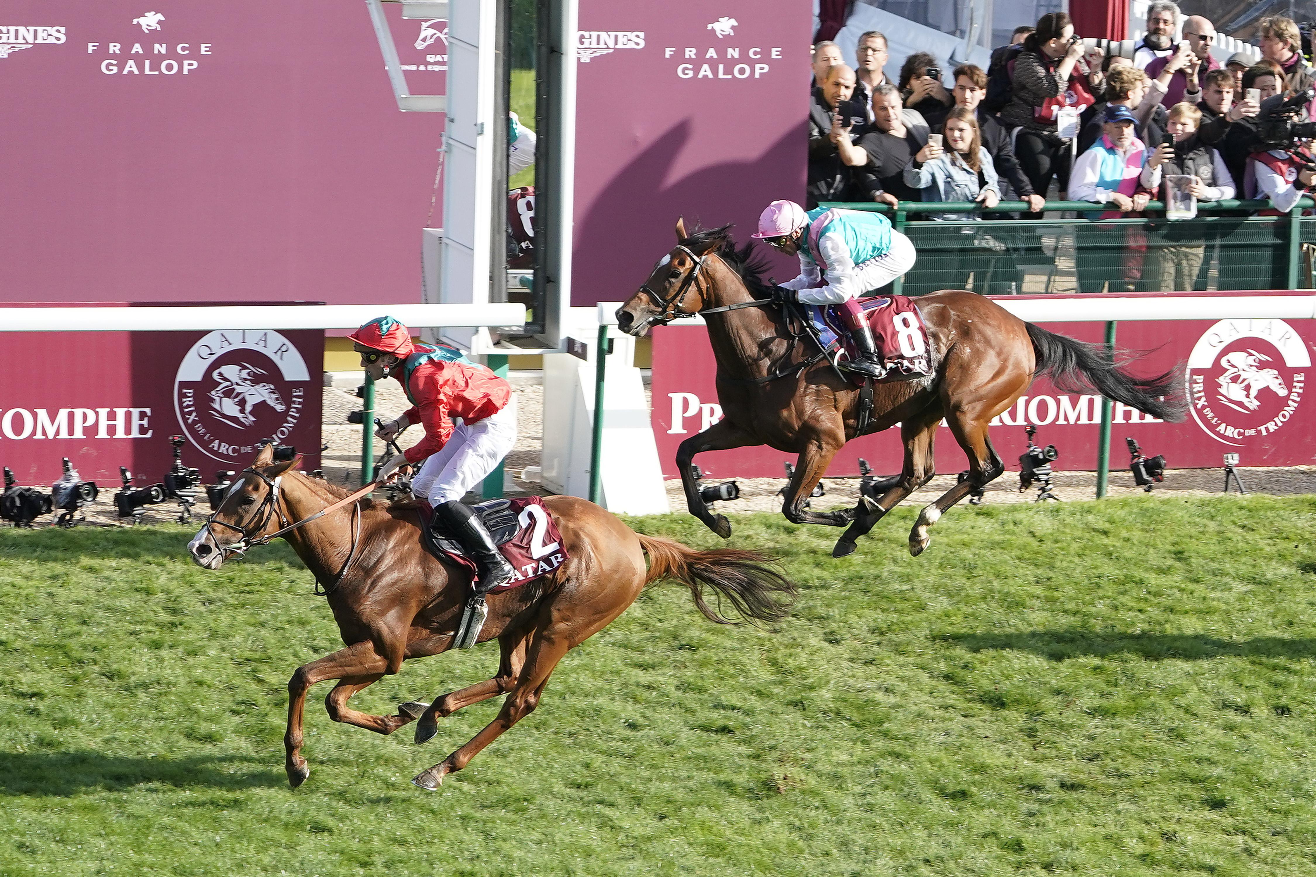 Superstar trio share Longines best racehorse award