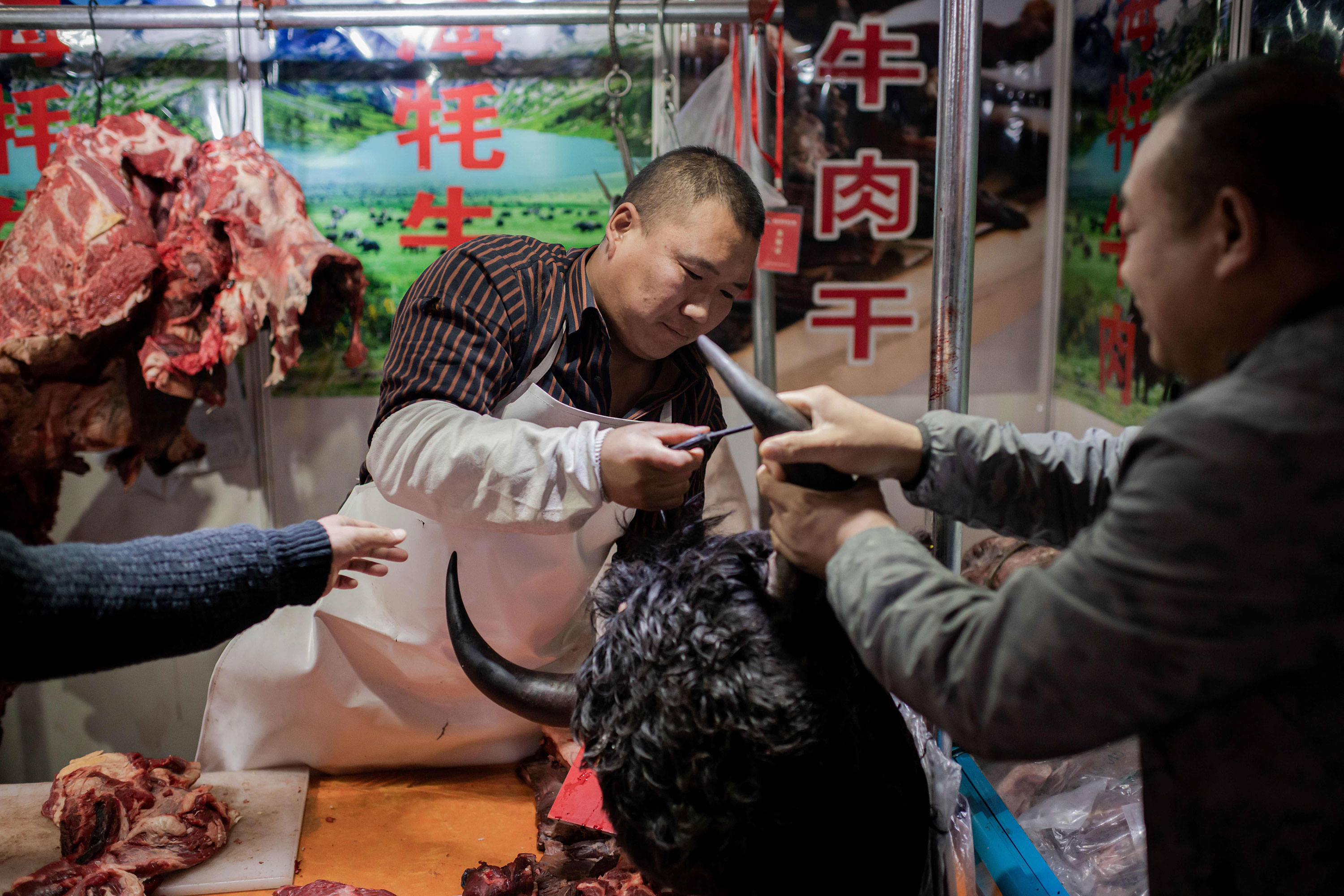 Chinese officials crack down on wildlife markets as coronavirus outbreak nears 3,000 cases