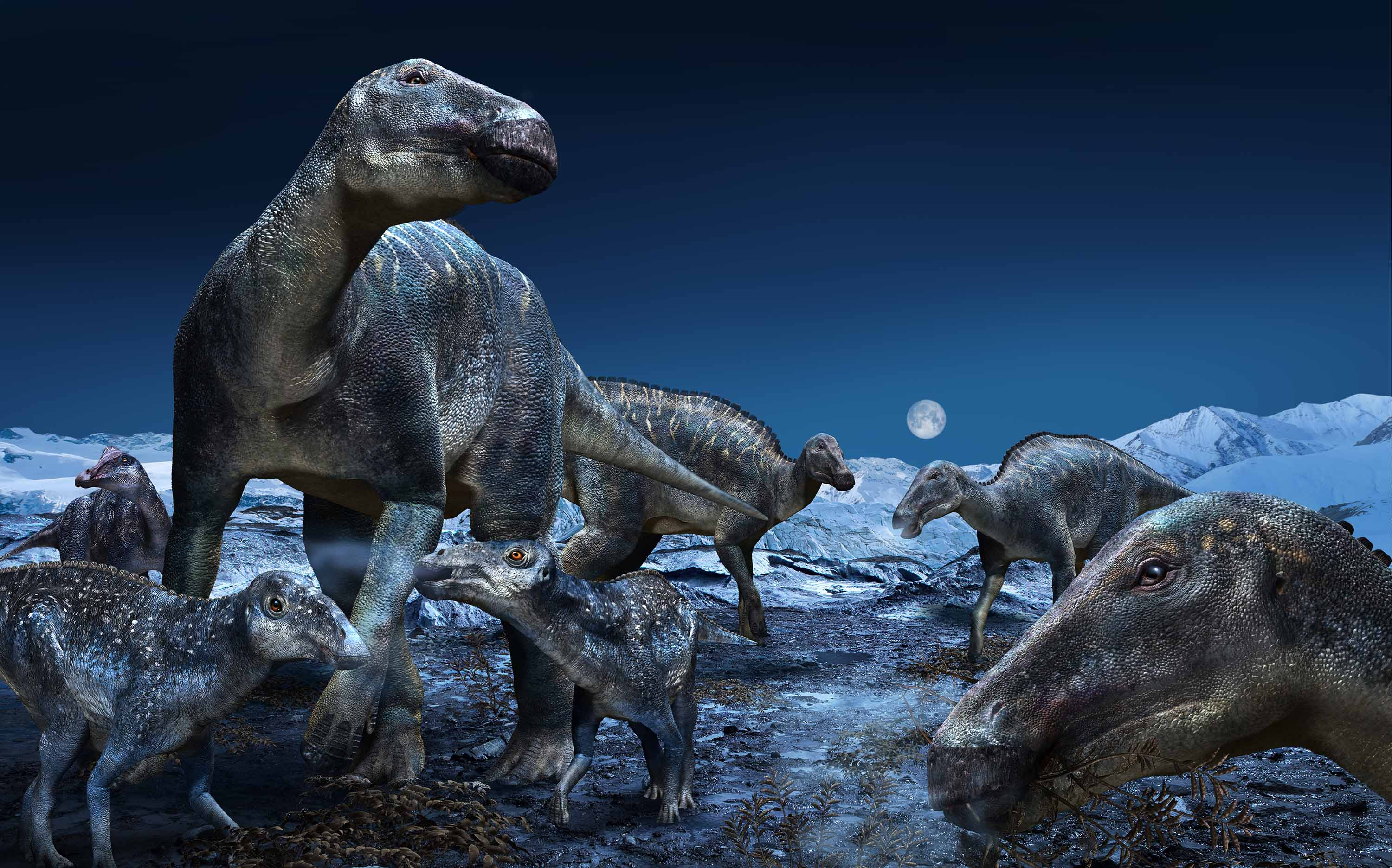 Dinosaurs' unique bone structure helped them support their large weight
