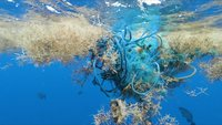 Microplastics discovered in 'extreme' concentrations in the North Atlantic
