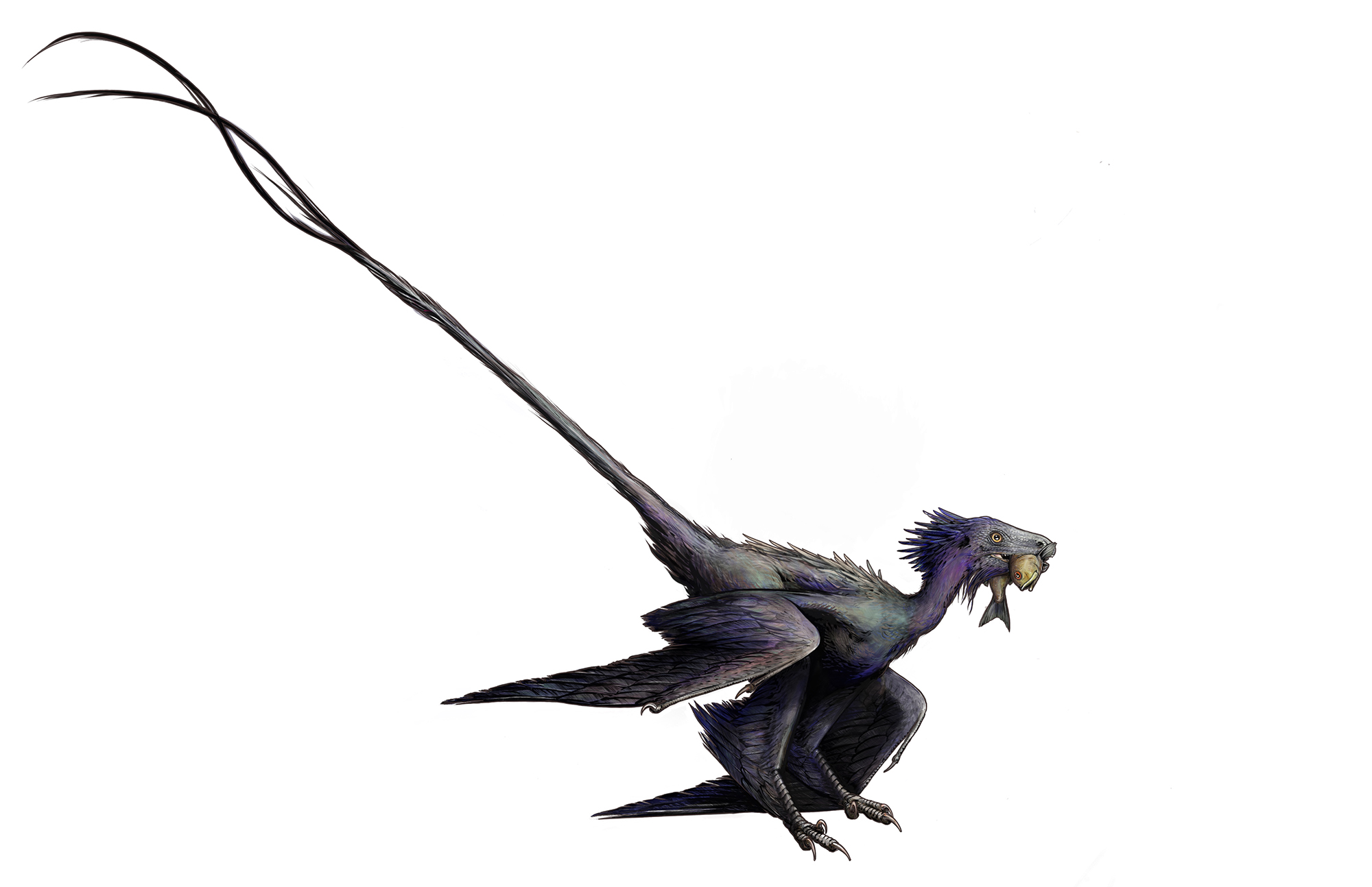 'Dancing dragon' feathered dinosaur fossil discovered in China