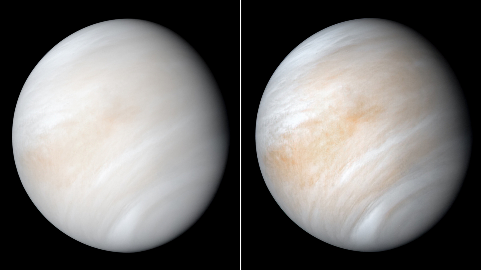 A gas found on Earth that signifies life has been detected in the clouds on Venus