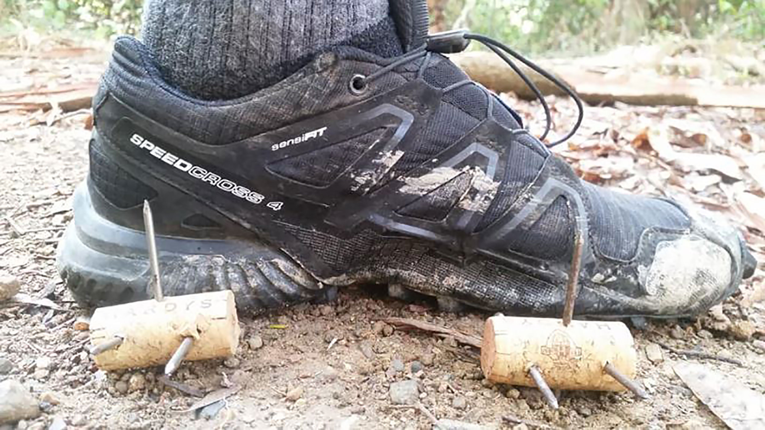 An Australian runner found dangerous spikes hidden on a popular nature trail