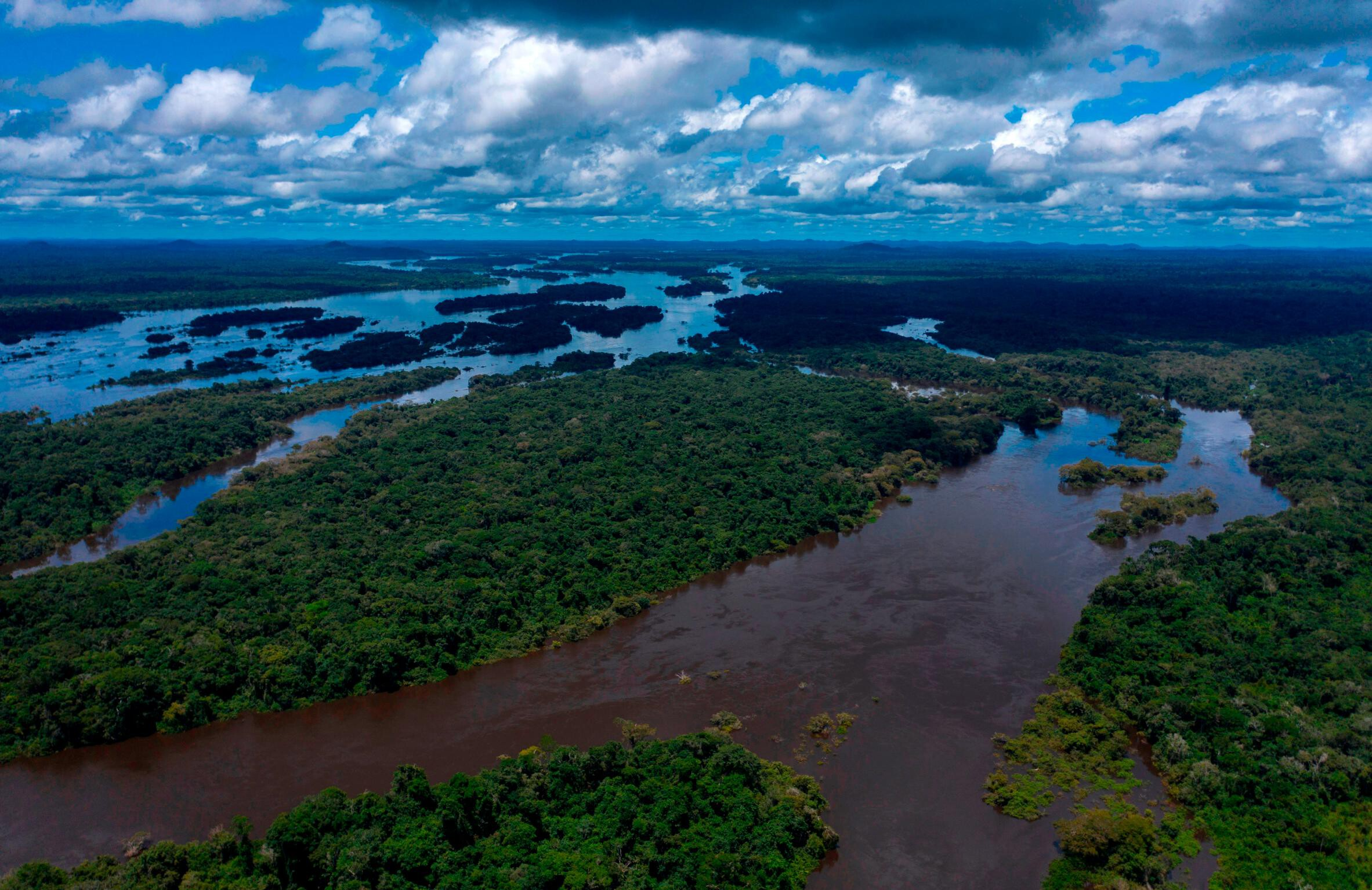 Rainforests are under siege. Here's what you should know.