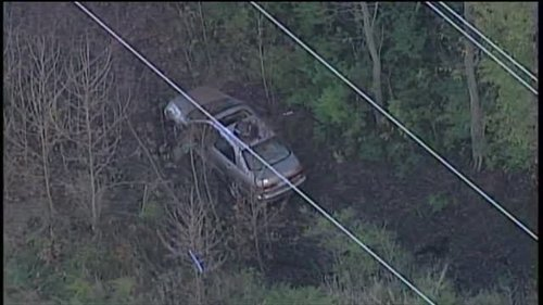 Image for Missouri man missing for 7 days found alive in ravine