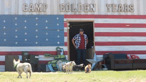 Image for New hope for old dogs at Camp Golden Years