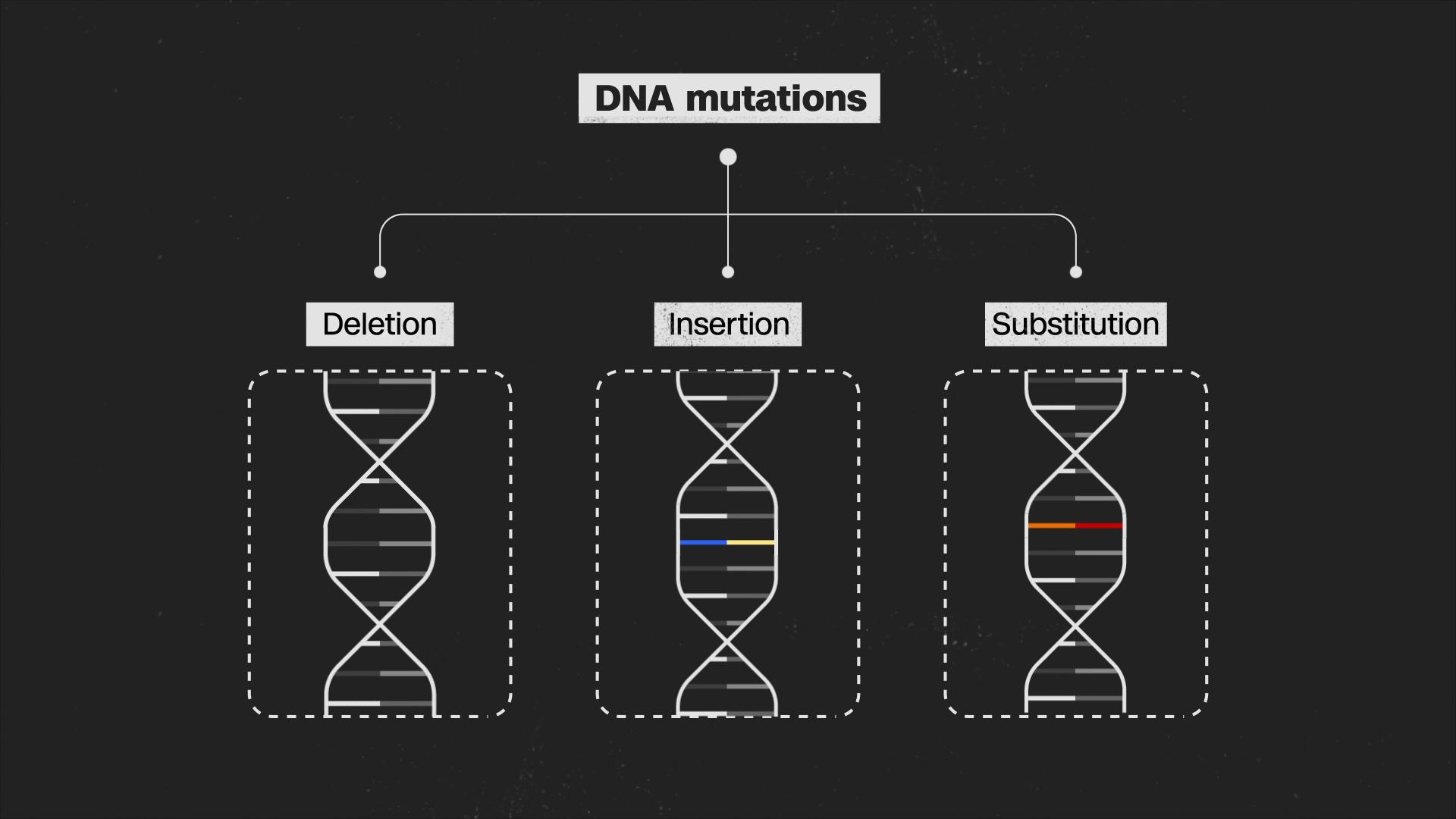 So far, coronavirus mutations don't mean much, big study finds