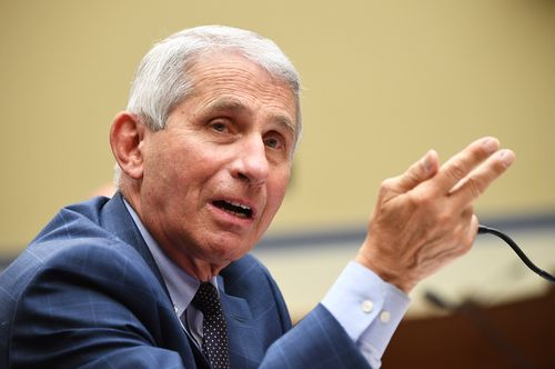 Image for Fauci says normal life may not be back until the end of 2021