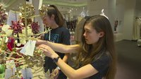 Teen sisters turn origami into a way to fund clean water projects and save lives